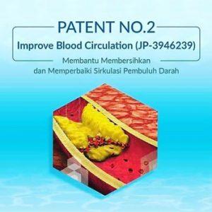 Patent sop 100+ Effect in Improvement of Peripheral Blood Circulation JP3946239